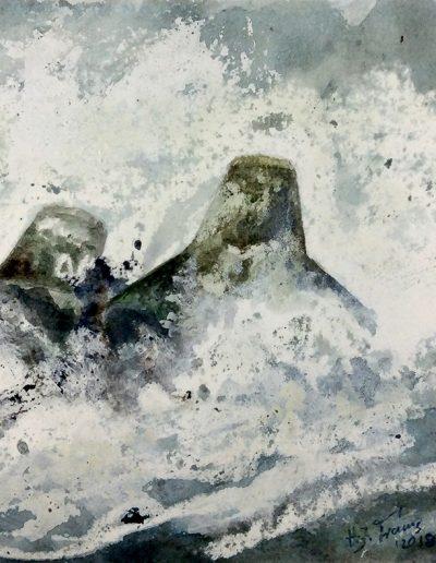 Tetrapoden